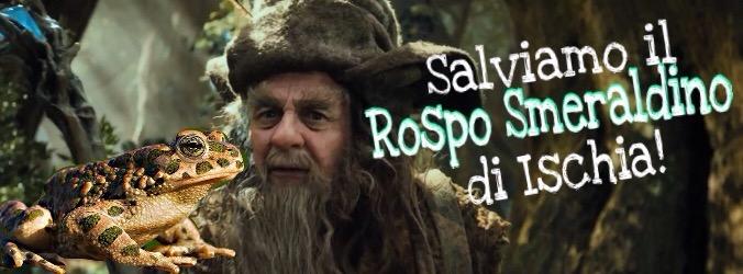 """Save the frogs day! Conferenza ad Ischia sul """"Rospo Smeraldino"""""""