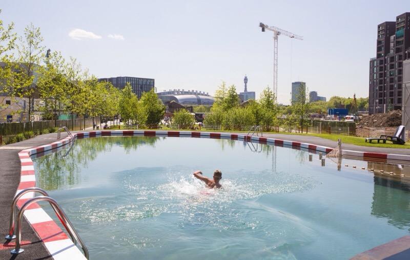 Pionieri: la piscina purificata dalle piante